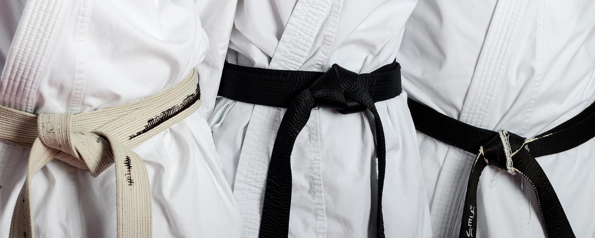 Aktuelles beim vfl Karate